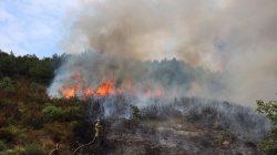 Eynesil'deki Yangın Kontrol Altında