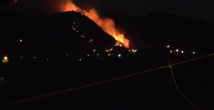 Trabzon'da Korkutan Yangın,